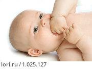 Купить «Младенец», фото № 1025127, снято 29 июля 2009 г. (c) Григорьева Любовь / Фотобанк Лори