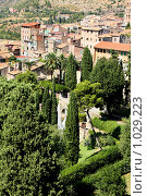 Купить «Италия. Город Тиволи. Вилла д'Эстэ», фото № 1029223, снято 26 августа 2008 г. (c) ElenArt / Фотобанк Лори