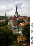 Купить «Старый Таллин», фото № 1031259, снято 12 августа 2009 г. (c) Ямаш Андрей / Фотобанк Лори