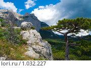 Купить «Вид на гору Ай-Петри», фото № 1032227, снято 14 июня 2009 г. (c) Андрей Ганночка / Фотобанк Лори
