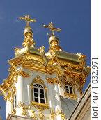 Позолоченные купола (2008 год). Редакционное фото, фотограф Дмитрий Янкин / Фотобанк Лори
