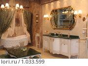 Купить «Роскошный интерьер ванной комнаты», фото № 1033599, снято 31 марта 2009 г. (c) Журавлева Виктория / Фотобанк Лори