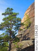 Купить «Заповедник Столбы. Красноярск», фото № 1034203, снято 9 августа 2009 г. (c) Типляшина Евгения / Фотобанк Лори