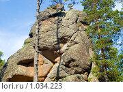 Купить «Заповедник Столбы. Красноярск», фото № 1034223, снято 9 августа 2009 г. (c) Типляшина Евгения / Фотобанк Лори