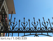 Купить «Вершина кованой ограды», эксклюзивное фото № 1040939, снято 14 августа 2009 г. (c) Анатолий Матвейчук / Фотобанк Лори