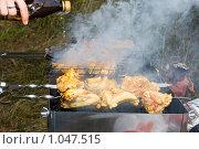 Купить «Приготовление шашлыка», эксклюзивное фото № 1047515, снято 22 августа 2009 г. (c) ФЕДЛОГ / Фотобанк Лори