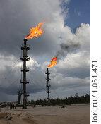 Купить «Факела», фото № 1051471, снято 30 июля 2009 г. (c) Мишарин Алексей / Фотобанк Лори
