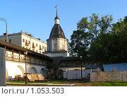 Купить «Москва. Спасо-Андронников монастырь», эксклюзивное фото № 1053503, снято 17 мая 2008 г. (c) lana1501 / Фотобанк Лори