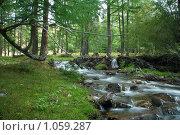 Купить «Ручей в лесу», фото № 1059287, снято 14 августа 2009 г. (c) Stepanuk Valera / Фотобанк Лори