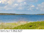 Берег острова Новик в Финском заливе. Стоковое фото, фотограф Моисеева Галина / Фотобанк Лори
