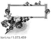 Купить «Виньетка для заглавия с листьями», иллюстрация № 1073459 (c) Кондорский Дмитрий / Фотобанк Лори