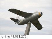 Купить «Самолет  (Швеция)», фото № 1081275, снято 3 августа 2009 г. (c) Александр Секретарев / Фотобанк Лори