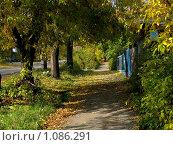 Купить «Школьная пора», фото № 1086291, снято 2 октября 2008 г. (c) Арапова Ольга / Фотобанк Лори