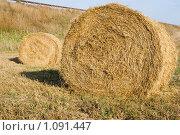 Тюк соломы. Стоковое фото, фотограф Гордиенко Олег / Фотобанк Лори