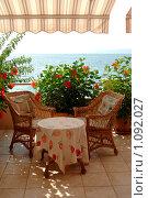 Купить «Гибискус на террасе возле моря», фото № 1092027, снято 9 августа 2009 г. (c) Наталия Ефимова / Фотобанк Лори