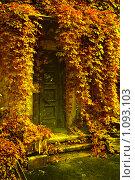 Купить «Дом Осени», фото № 1093103, снято 14 сентября 2009 г. (c) Степанова Надежда / Фотобанк Лори