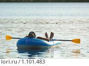 Под солнцем. Стоковое фото, фотограф Сергей Жуков / Фотобанк Лори