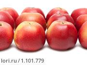Купить «Красные яблоки», фото № 1101779, снято 17 сентября 2009 г. (c) Руслан Кудрин / Фотобанк Лори