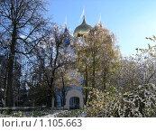 Успенский Собор Троице-Сергиевой Лавры в октябре (2005 год). Стоковое фото, фотограф Ирина Малашкина / Фотобанк Лори