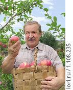 Купить «Мужчина с корзиной яблок», фото № 1108235, снято 9 сентября 2009 г. (c) Лукиянова Наталья / Фотобанк Лори