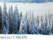 Купить «Зимний горный пейзаж», фото № 1108479, снято 2 февраля 2009 г. (c) Юрий Брыкайло / Фотобанк Лори