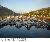 Купить «Яхты в Нарвике. Норвегия», фото № 1110239, снято 30 июня 2009 г. (c) Татьяна Чурсина / Фотобанк Лори