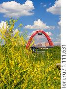 Купить «Живописный мост на фоне желтый цветущих растений, Москва», фото № 1111631, снято 11 июля 2009 г. (c) Fro / Фотобанк Лори
