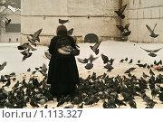 Кормление голубей. Стоковое фото, фотограф Людмила Старшинова / Фотобанк Лори
