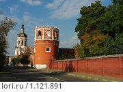 Донской монастырь в Москве (2009 год). Стоковое фото, фотограф Власов Виктор Валентинович / Фотобанк Лори