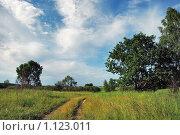 Тропинка, летний пейзаж. Стоковое фото, фотограф Лариса Бондаренко / Фотобанк Лори