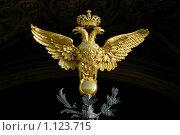 Купить «Двуглавый орел», фото № 1123715, снято 1 мая 2009 г. (c) Смыгина Татьяна / Фотобанк Лори