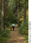 Прогулка в осеннем лесу. Стоковое фото, фотограф Сергей Валентинович Анчуков / Фотобанк Лори
