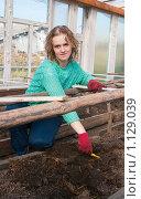 Девушка рыхлит землю в теплице, фото № 1129039, снято 3 октября 2009 г. (c) Ирина Солошенко / Фотобанк Лори