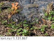 Пожар. Стоковое фото, фотограф Кузнецов Сергей / Фотобанк Лори