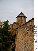 Ивангородская крепость (2009 год). Стоковое фото, фотограф Владимир Гарникян / Фотобанк Лори