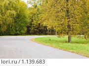 Осенний пейзаж, фото № 1139683, снято 7 октября 2009 г. (c) Сергей Лаврентьев / Фотобанк Лори