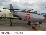 Купить «Одноместный истребитель-перехватчик Як-30», эксклюзивное фото № 1140451, снято 19 августа 2009 г. (c) Алёшина Оксана / Фотобанк Лори