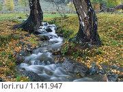 Осенний Пейзаж Родник. Стоковое фото, фотограф Ленев Андрей / Фотобанк Лори