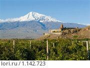 Купить «Монастырь Хор Вирап на фоне горы Арарат, Армения», фото № 1142723, снято 24 сентября 2009 г. (c) Марианна Меликсетян / Фотобанк Лори