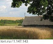 Деревенский дом в поле. Стоковое фото, фотограф Alexander Pasichenko / Фотобанк Лори