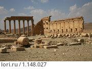 Купить «Пальмира, Сирия», фото № 1148027, снято 22 сентября 2009 г. (c) Анна Мегеря / Фотобанк Лори