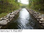 Купить «Соловецкие острова. Каналы между озерами.», фото № 1152007, снято 12 сентября 2009 г. (c) Михаил Ворожцов / Фотобанк Лори