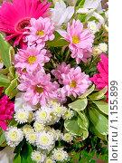 Купить «Букет», фото № 1155899, снято 21 марта 2009 г. (c) Куликов Константин / Фотобанк Лори
