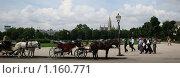 Купить «Стоянка фиакров», фото № 1160771, снято 29 июня 2009 г. (c) Светлана Попова / Фотобанк Лори