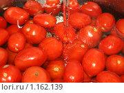 Много красных помидоров под струёй воды. Стоковое фото, фотограф Татьяна Кирилова / Фотобанк Лори