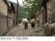 Купить «Тяжелая ноша», фото № 1162963, снято 9 июля 2009 г. (c) Ирина Соколова / Фотобанк Лори