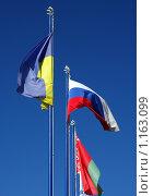 Флаги. Стоковое фото, фотограф Окунев Александр Владимирович / Фотобанк Лори