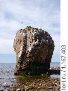 Купить «Скала на берегу моря», эксклюзивное фото № 1167403, снято 11 июля 2006 г. (c) Наталия Шевченко / Фотобанк Лори