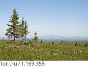 Купить «Уральская долина», фото № 1169359, снято 12 июля 2009 г. (c) Надежда Болотина / Фотобанк Лори