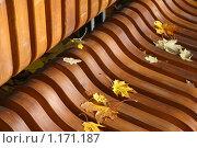 Купить «Желтые листья на скамейке в парке», фото № 1171187, снято 15 октября 2009 г. (c) Наталья Белотелова / Фотобанк Лори